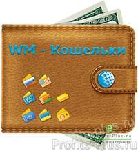 Как создать электронный кошелек в WebMoney