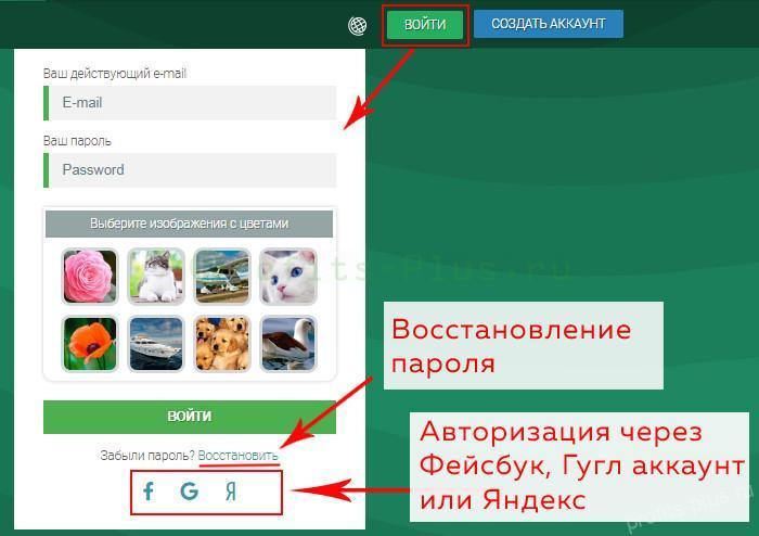 Авторизация через соцсети на Seo Sprint для заработка в интернете