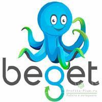 Отзыв на хостинг Beget
