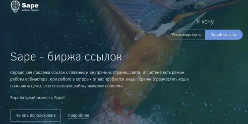 Как монетизировать страницу через sape.ru