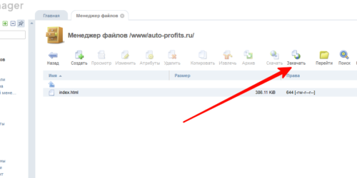 Инструкция по установке купленного готового сайта WordPress на хостинг с панелью ISPmanager